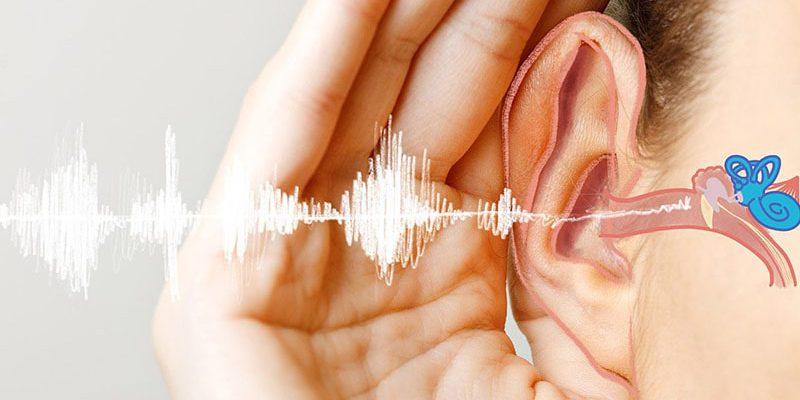 نویز چه تاثیر مخربی بر دستگاه عصبی شنوایی می گذارد